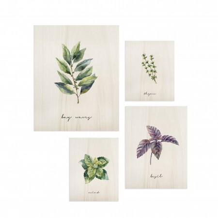 Pack de quadros Plants