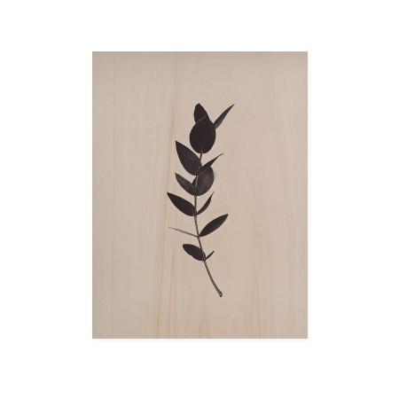 Caixa de madera Green Plant